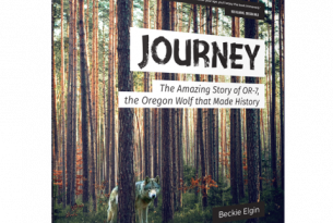 Journey Book Cover (courtesy of Beckie Elgin)