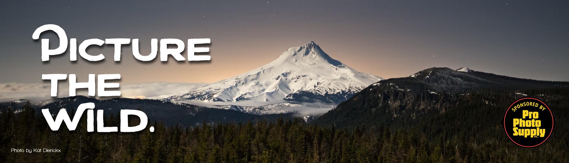 Oregon Wild Outdoor Photo Contest (Flag Point photo by Kat Dierickx)